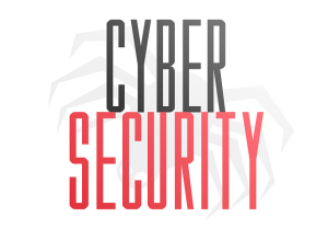 cyber-security icNet