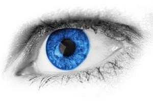 wsp eye2